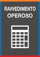 GUIDA RAVVEDIMENTO OPEROSO